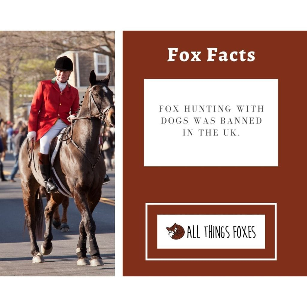 fox-facts-hunting-banned